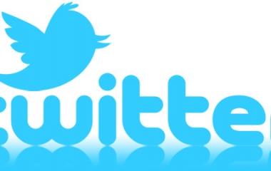 twitter critiche